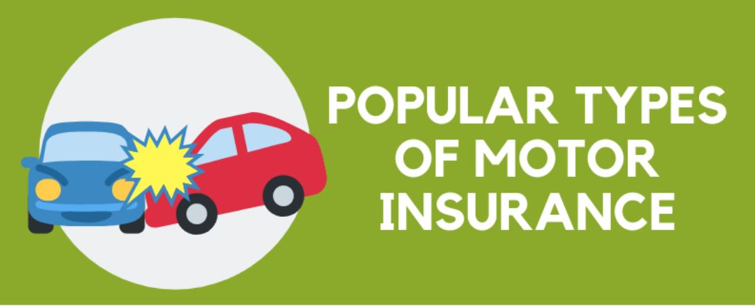 Village Insurance Direct - Types of Motor Insurance Infographic